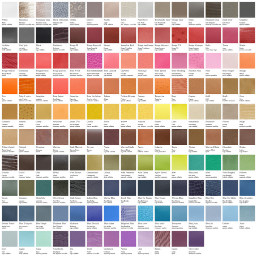HERMES` INSPIRING VIBRANT CHOICES AND COMBINATIONS COLOR CHART
